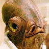 Students at Mississippi University call upon Admiral Ackbar as mascot replacement.